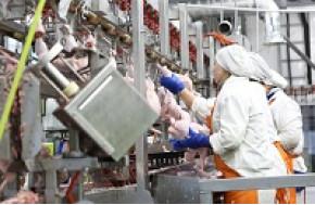 Снова поставки инженерного оборудования для ОАО «Омский бекон»